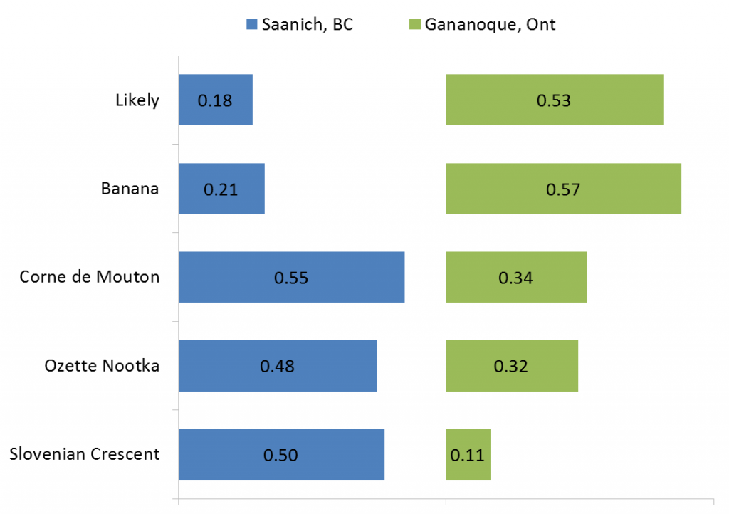 Yields (kg/plant) of 5 fingerling varieties grown under field conditions in Saanich, BC and Gananoque, Ont in 2013.