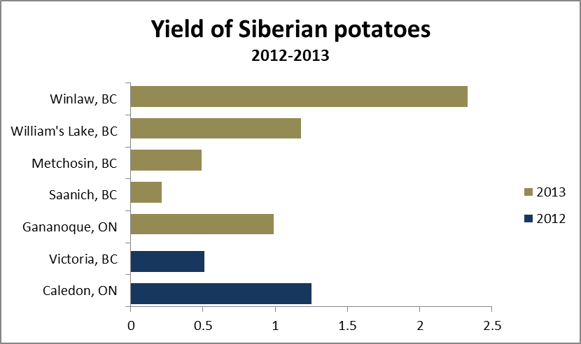 Yields of Siberian potatoes in 2012 and 2013, all locations.