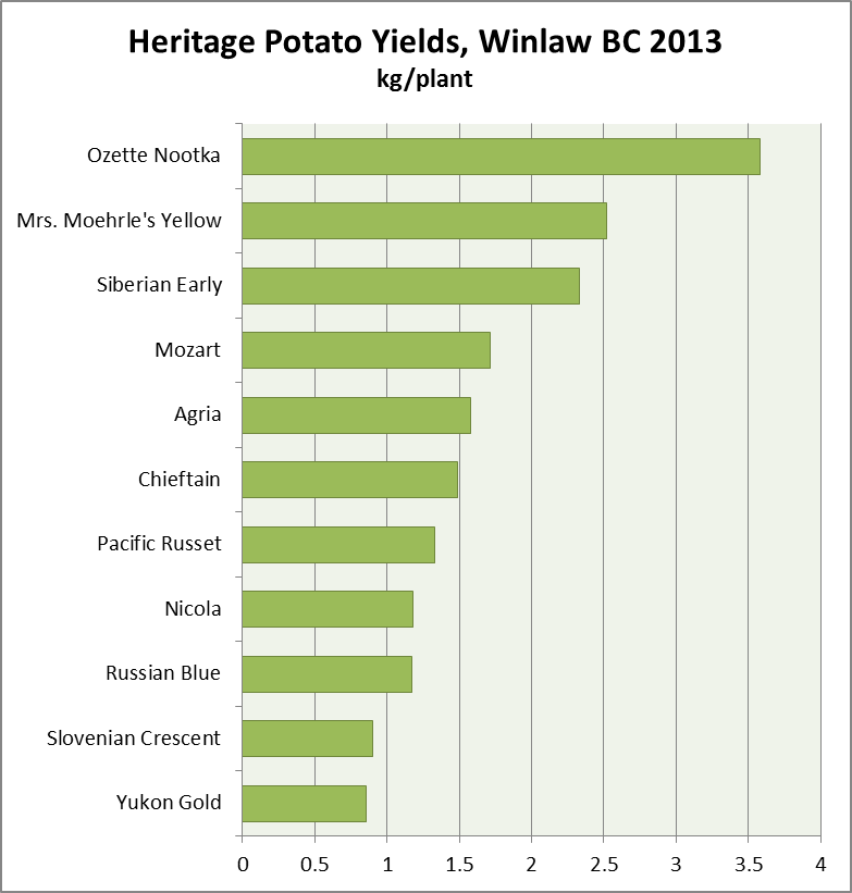 2013 Potato Yields in Winlaw, BC, 2013